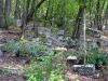 Караимское кладбище Балта Тиймез