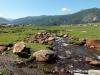 поселок Джазатор
