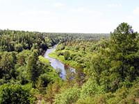 Оленьи ручьи