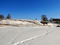 Река Увелька зимой