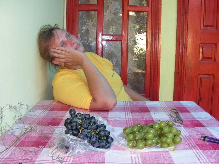 дегустация винограда