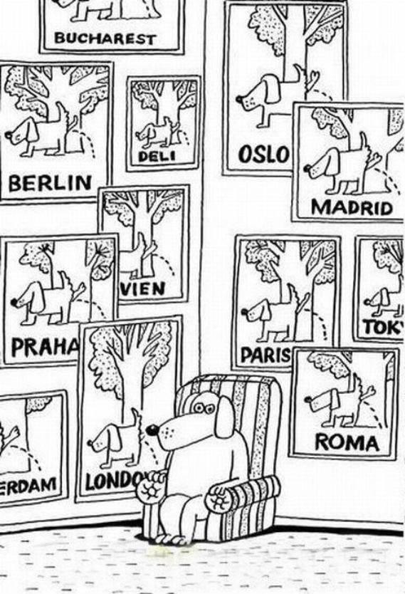 юмор путешествия