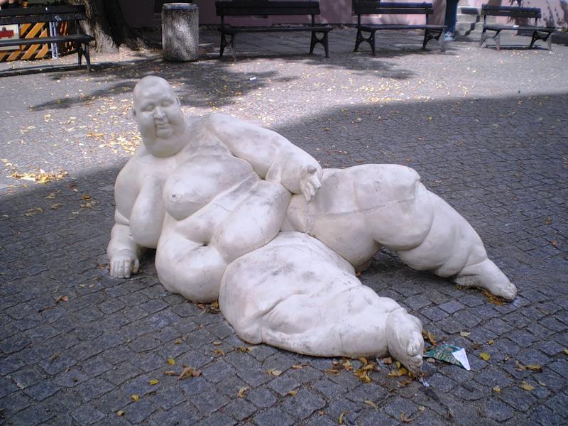 Жертва фастфуда, Чехия