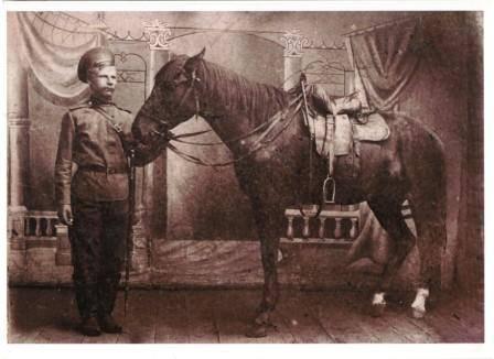 Конь в фотоалье
