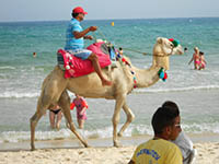 Мой Тунис-2014