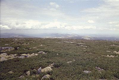 Вершина Ямантау. Болото и пронизывающий ветер. На заднем плане — хребет Машак