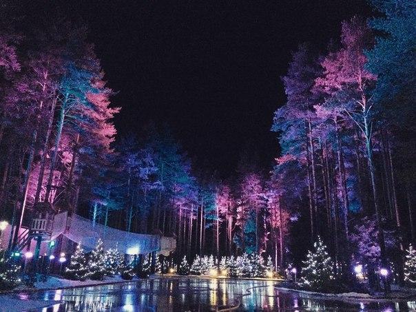 Лесной каток в «Охта Парке»