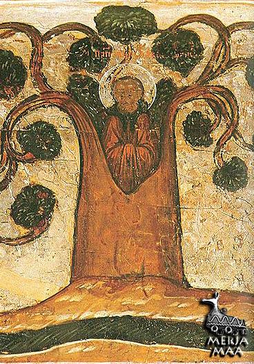 Преподобный Павел спасается в дупле липы клеймо иконы XVII века