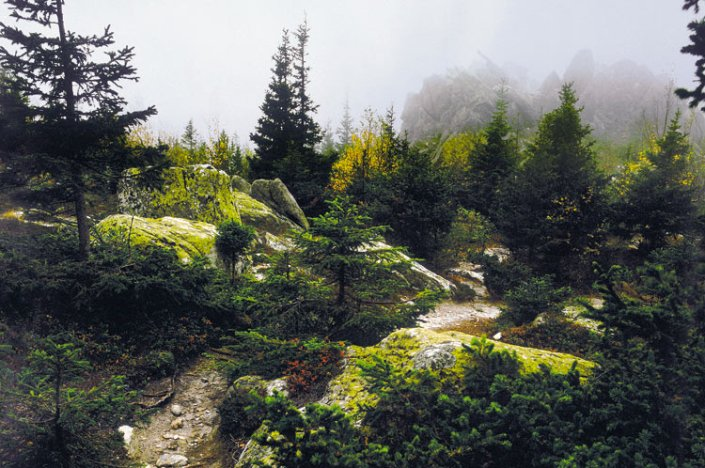 Долина Сказок
